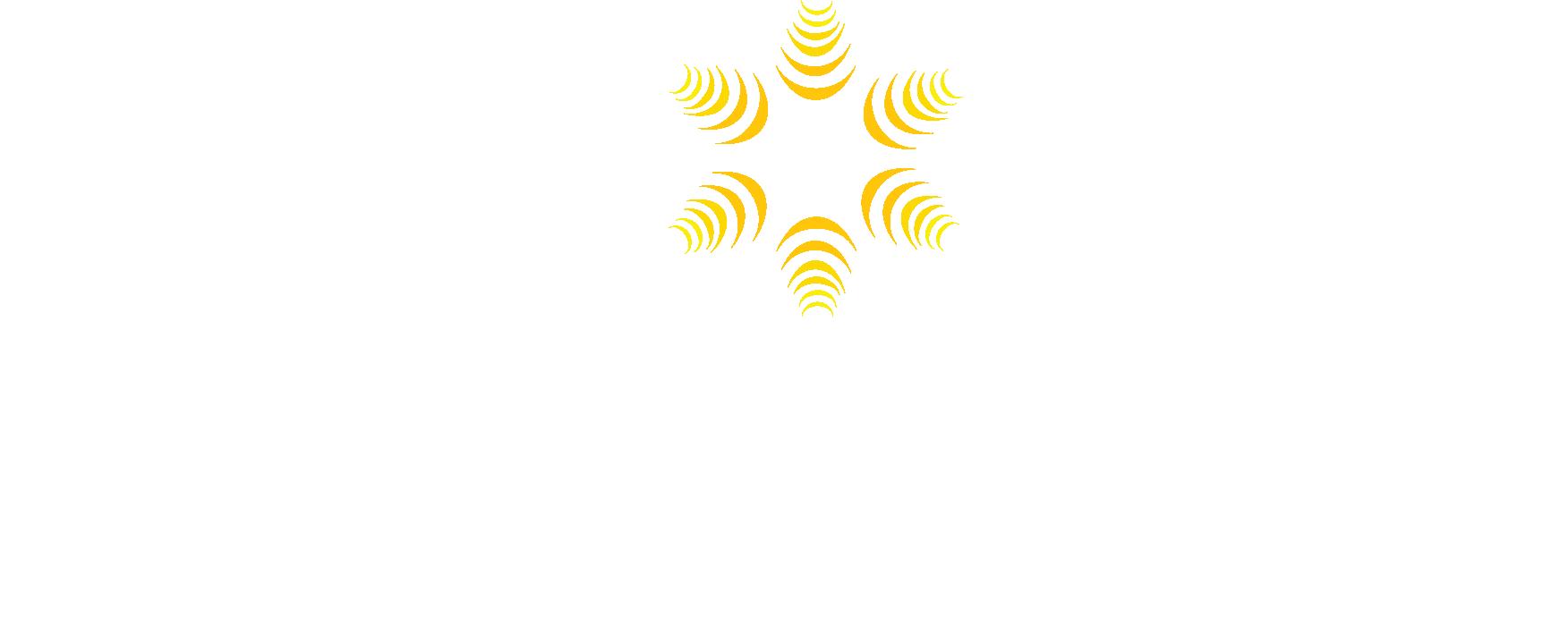 Dorista